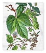 Humulus Lupulus, Common Hop Or Hop Fleece Blanket
