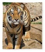 Hunger Tiger Fleece Blanket