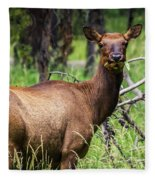 Hungry Elk Fleece Blanket