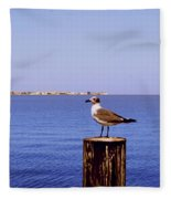 Hungry Sea Gull Fleece Blanket