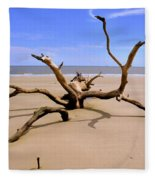 Hunting Island Beach Beaufort Sc Fleece Blanket