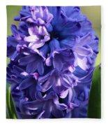 Hyacinth Highlights Fleece Blanket