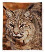 I Am One Good Looking Bobcat Fleece Blanket