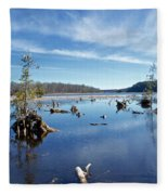 Iago Springs 9500 Fleece Blanket
