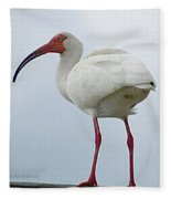Ibis In The Morning Fleece Blanket