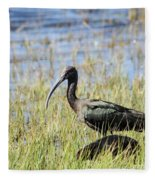 Ibis Looking Around Fleece Blanket