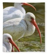 Ibis Three Fleece Blanket