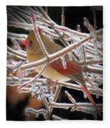 Ice Cage - Female Cardinal Fleece Blanket