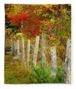 If I Could Paint No 1 - New England Fall Fence Fleece Blanket