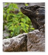 Iguana At Talum Ruins Mexico 2 Fleece Blanket
