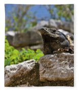Iguana At Talum Ruins Mexico Fleece Blanket