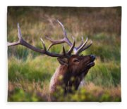 I'm Talking To You.  Fleece Blanket