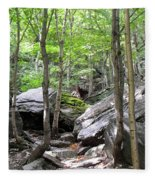 Image Included In Queen The Novel - Rocks At Smugglers Notch Fleece Blanket