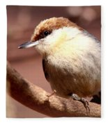 Img_0001 Brown-headed Nuthatch Fleece Blanket