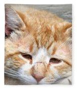 Img_0001 Cat Fleece Blanket
