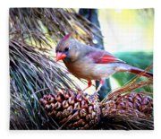 Img_0311 - Northern Cardinal Fleece Blanket