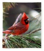 Img_0565-004 - Northern Cardinal Fleece Blanket