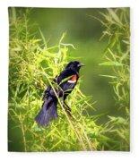 Img_0841-003 - Red-winged Blackbird Fleece Blanket