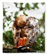 Img_1049-006 - Red-tailed Hawk Fleece Blanket