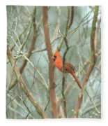 Img_1273-003 - Northern Cardinal Fleece Blanket