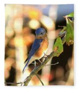Img_145-005 - Eastern Bluebird Fleece Blanket