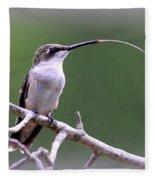 Img_1768-001 - Ruby-throated Hummingbird Fleece Blanket