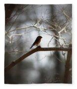 Img_2287 - Eastern Bluebird Fleece Blanket