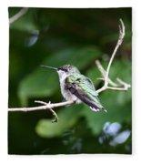 Img_3309 - Ruby-throated Hummingbird Fleece Blanket