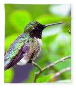 Img_3524-002 - Ruby-throated Hummingbird Fleece Blanket