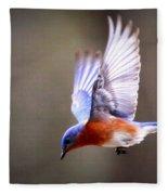 Img_4139-003 - Eastern Bluebird Fleece Blanket