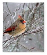 Img_6770 - Northern Cardinal Fleece Blanket