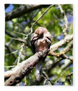 Img_7276 - Mourning  Dove Fleece Blanket