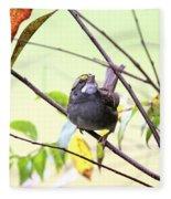Img_7541-002 - White-throated Sparrow Fleece Blanket