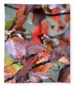 Img_ 8621 - Northern Cardinal Fleece Blanket