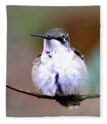 Img_8835 - Ruby-throated Hummingbird Fleece Blanket