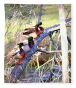Img_8884-002 - Mallard Fleece Blanket