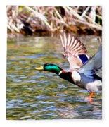 Img_8981-002 - Mallard Fleece Blanket