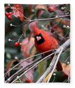 Img_9971-023 - Northern Cardinal Fleece Blanket