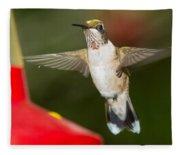 Immature Male Ruby-throated Hummer Fleece Blanket