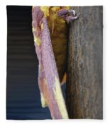 Imperial Moth Profile Fleece Blanket