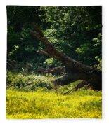 In A Field Of Gold Fleece Blanket