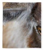 In A Goat's Eye Fleece Blanket