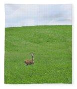In Fields Of Green Fleece Blanket