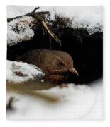 In The Shelder. Eurasian Blackbird Fleece Blanket