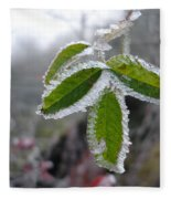 In The Winter Sunlight Fleece Blanket