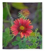 Indian Blanket Flower Fleece Blanket