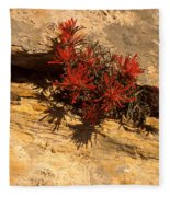 Indian Paint Brush Fleece Blanket