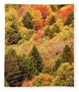 Canopy Fleece Blanket