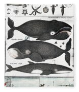 Indigenous Fish, Greenland, 18th Century Fleece Blanket
