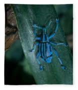 Indigo Blue Weevil Fleece Blanket